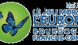 Vendredi 4 mai 2018 : Simulation du Parlement européen pour des lycéens Rhénans-Palatins