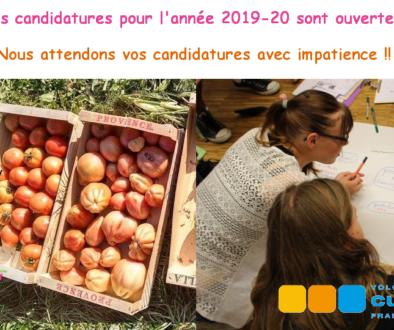 Volontariats Franco-Allemands : Les candidatures sont encore ouvertes !